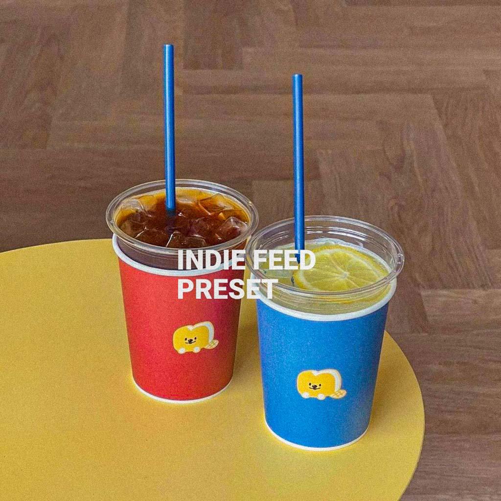 Indie Feed preset Lightroom Preset