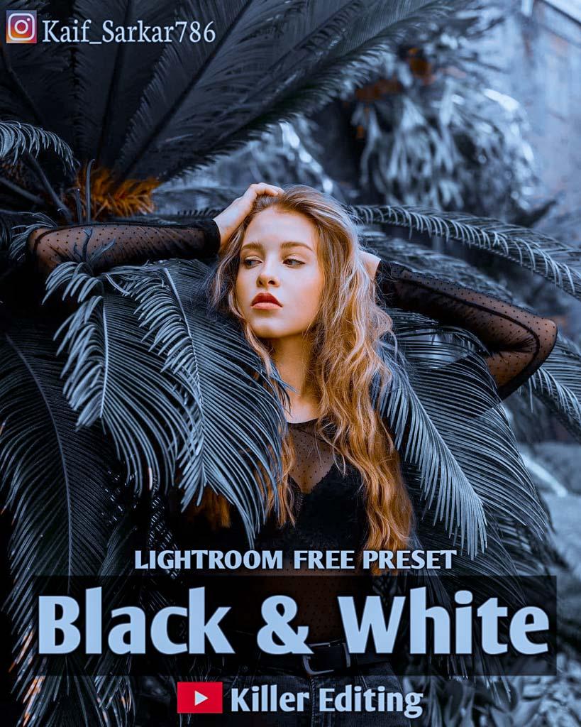 Black and White Lightroom Preset