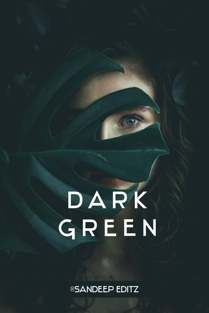 Dark Green- Lightroom Preset