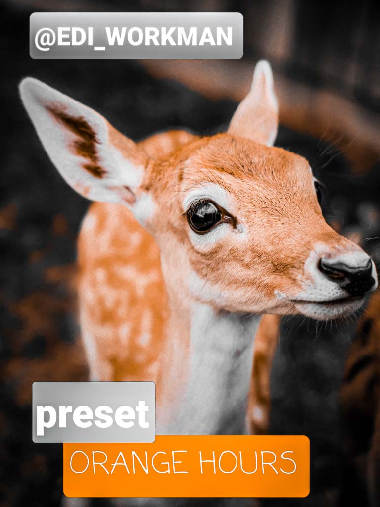 Orange hours lr preset- Lightroom Preset