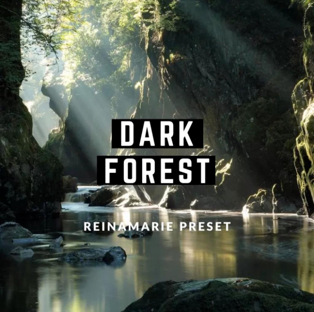 Dark Forest Lightroom Preset- Lightroom Preset