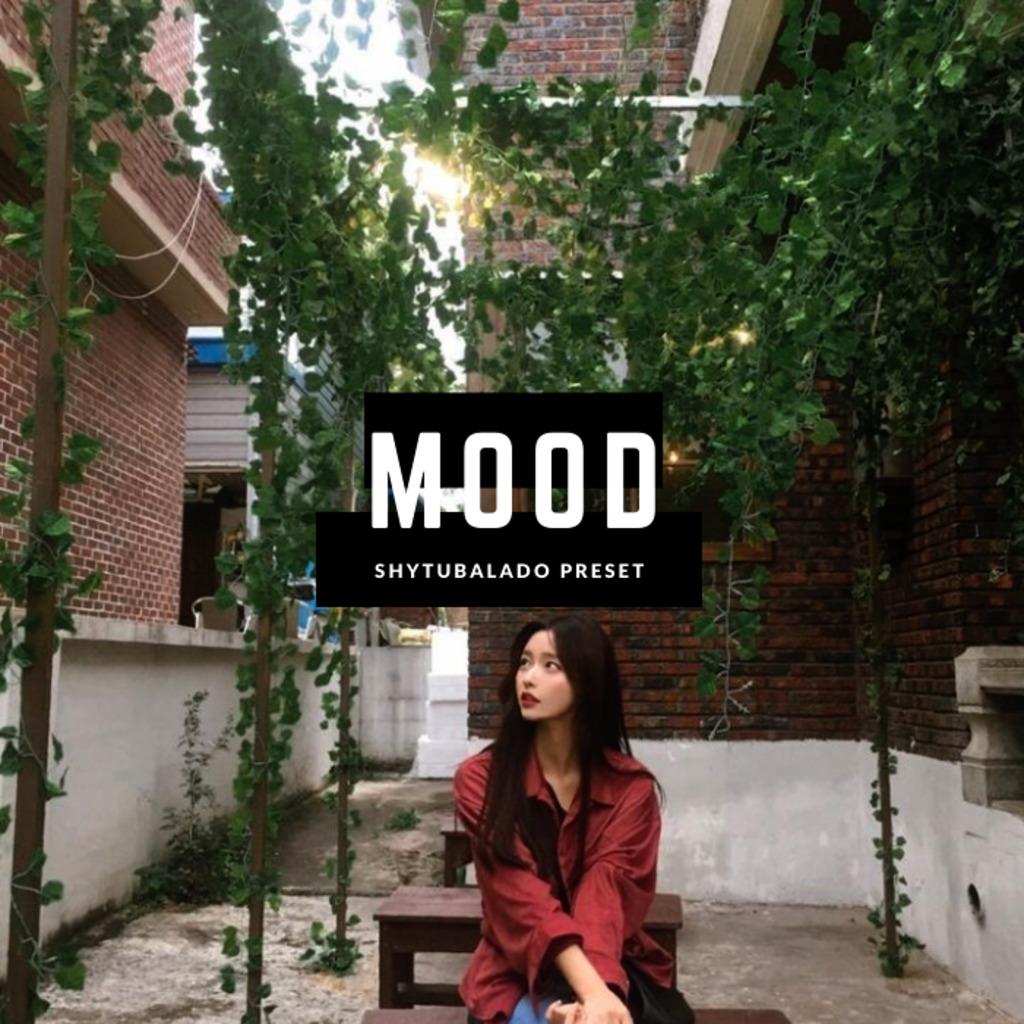 Mood Lightroom Preset- Lightroom Preset