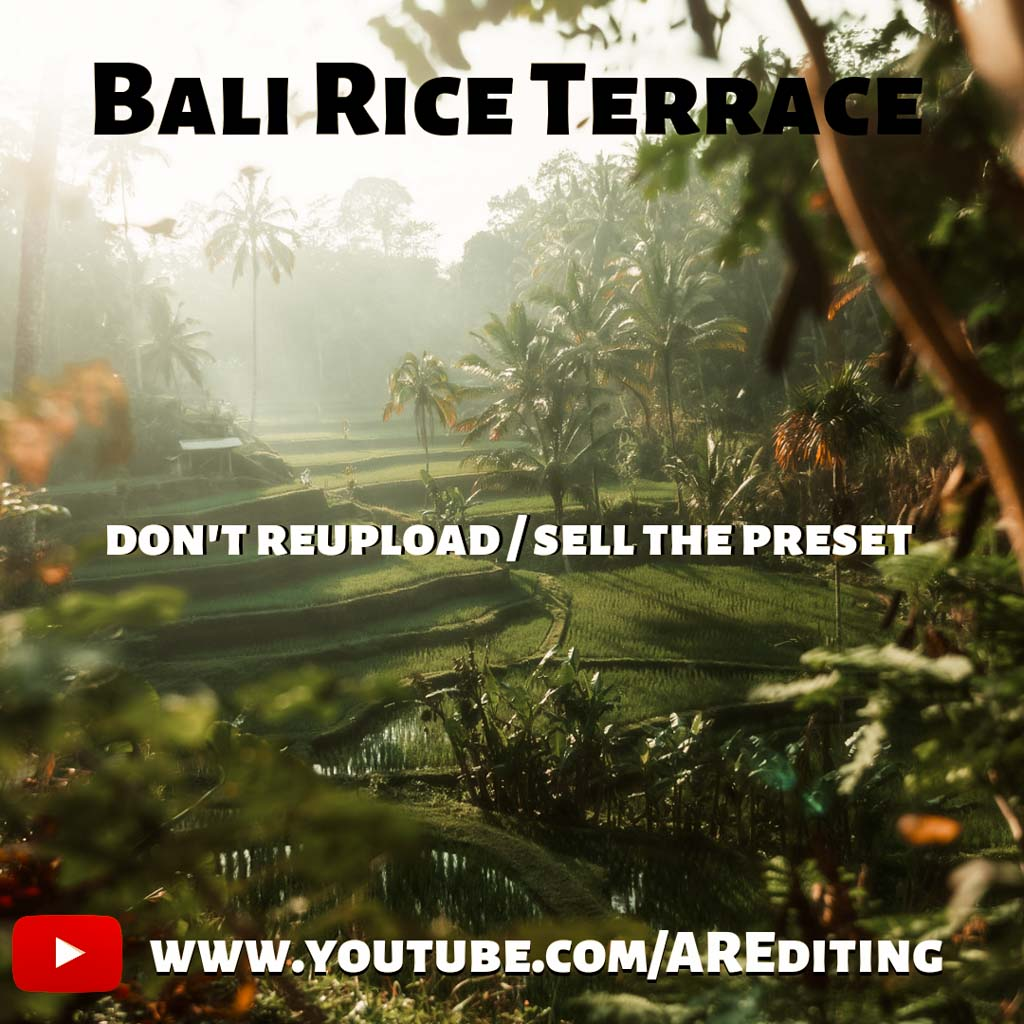 Bali Rice Terrace Presets! Lightroom Preset