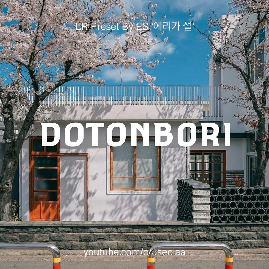 DOTONBORI LIGHTROOM MOBILE- Lightroom Preset