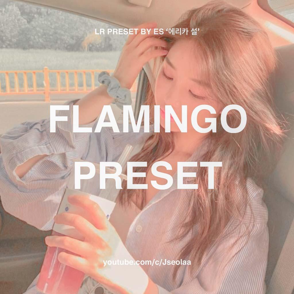 FLAMINGO LIGHTROOM PRESET Lightroom Preset
