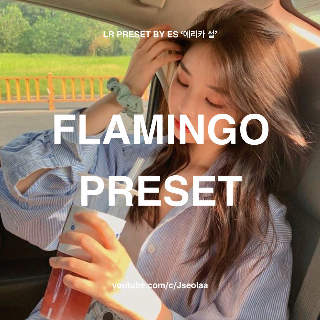 FLAMINGO LIGHTROOM PRESET- Lightroom Preset