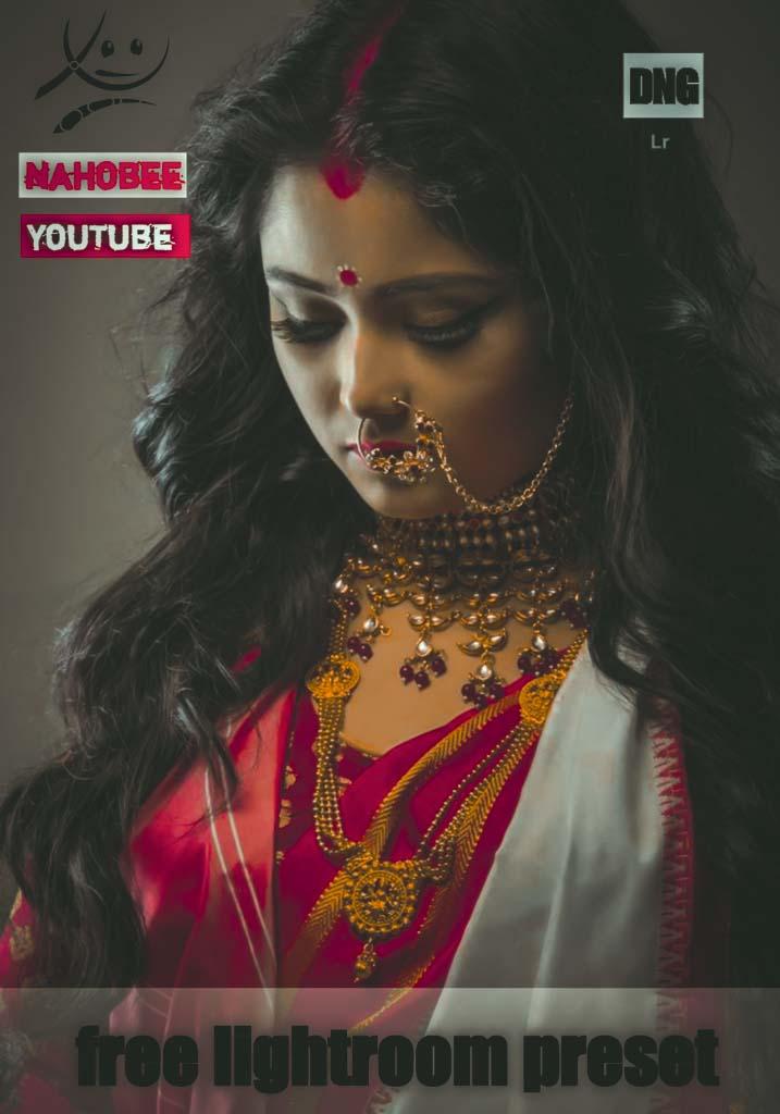 indian preset Lightroom Preset