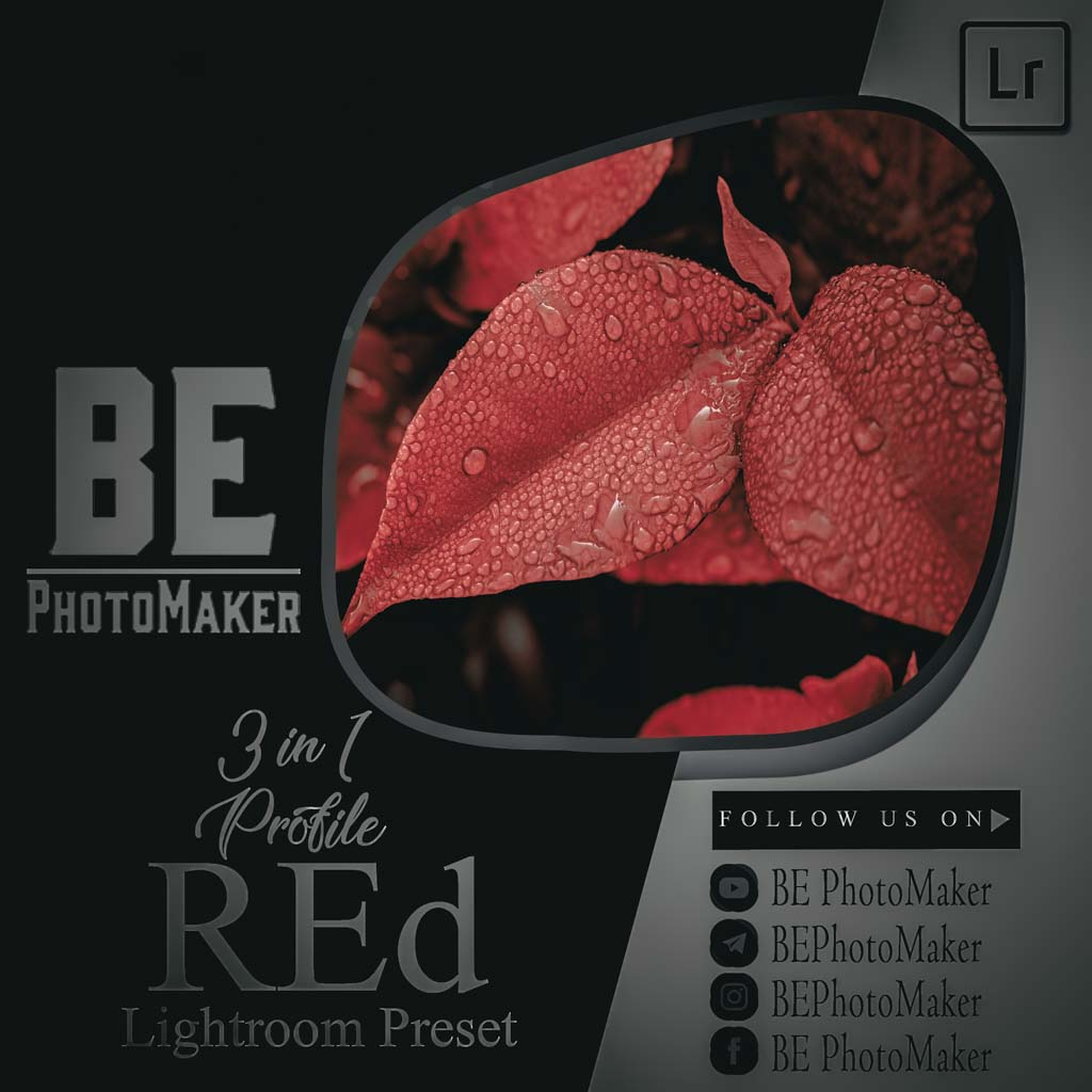 3 in 1 Profile Red Preset by BE PhotoMaker Lightroom Preset