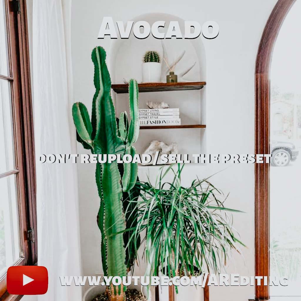 Avocado- Lightroom Preset