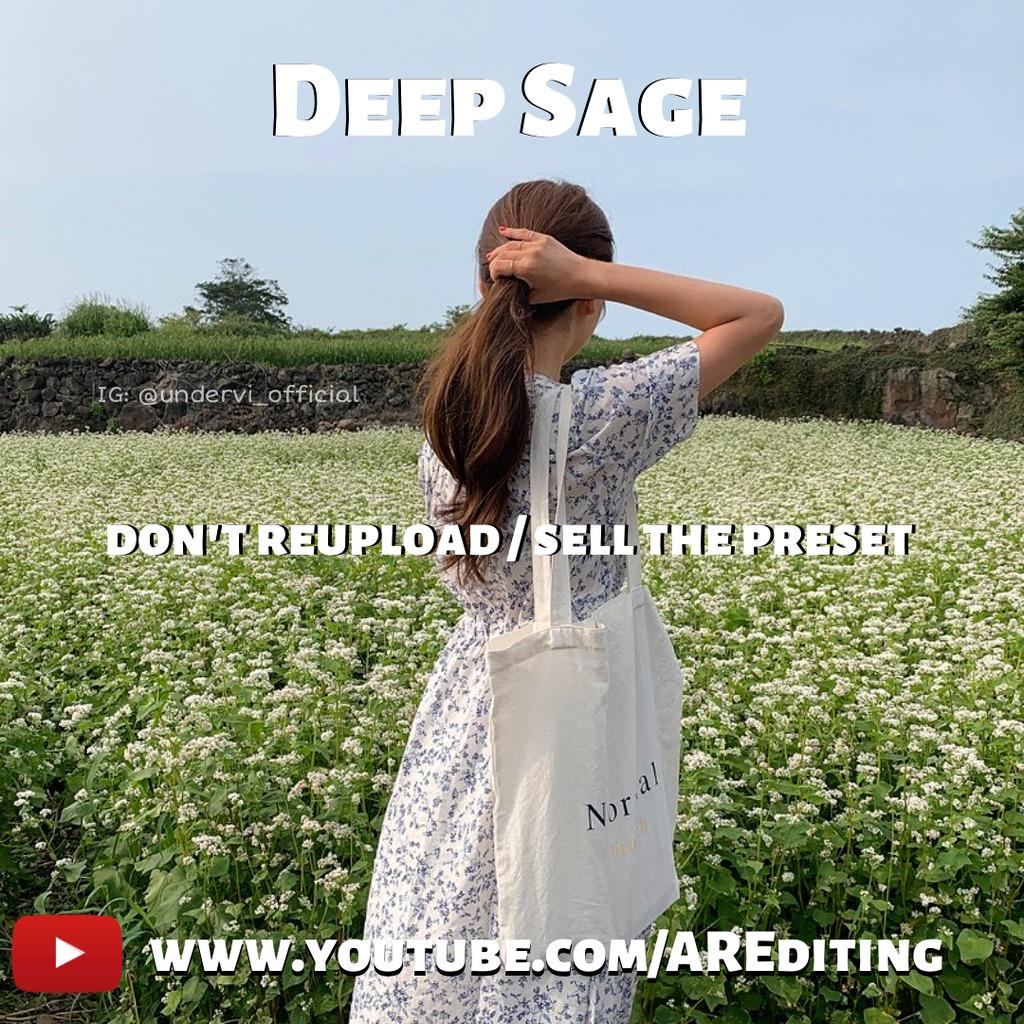 Deep sage Preset!- Lightroom Preset