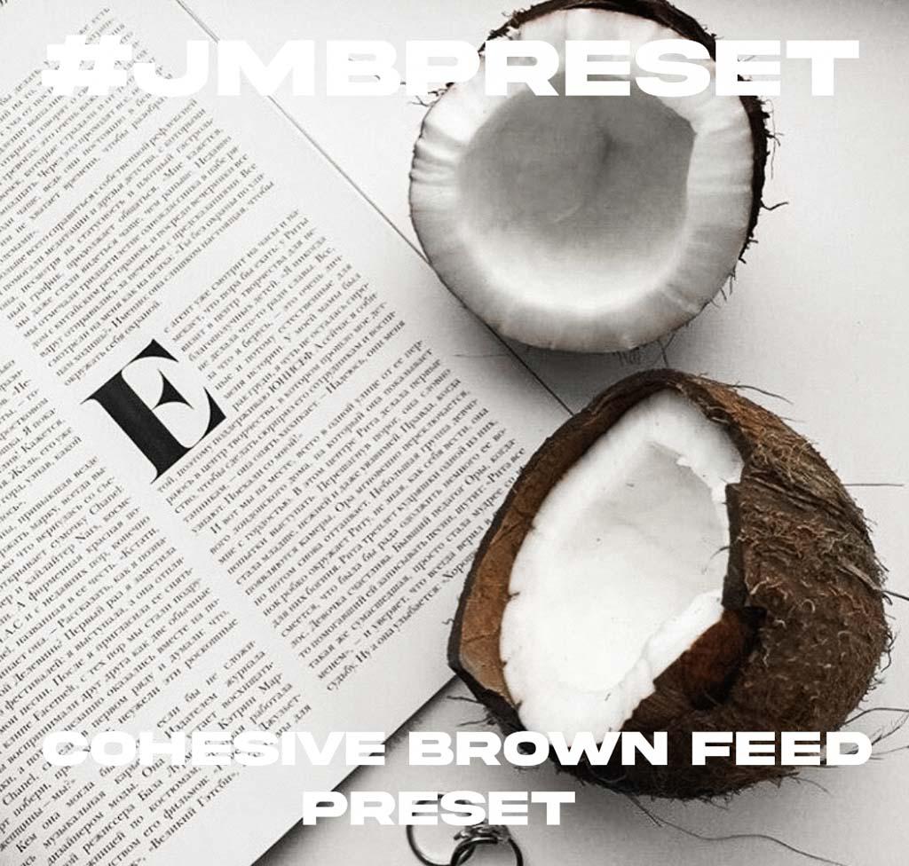 Cohesive Brown Feed Lightroom Preset