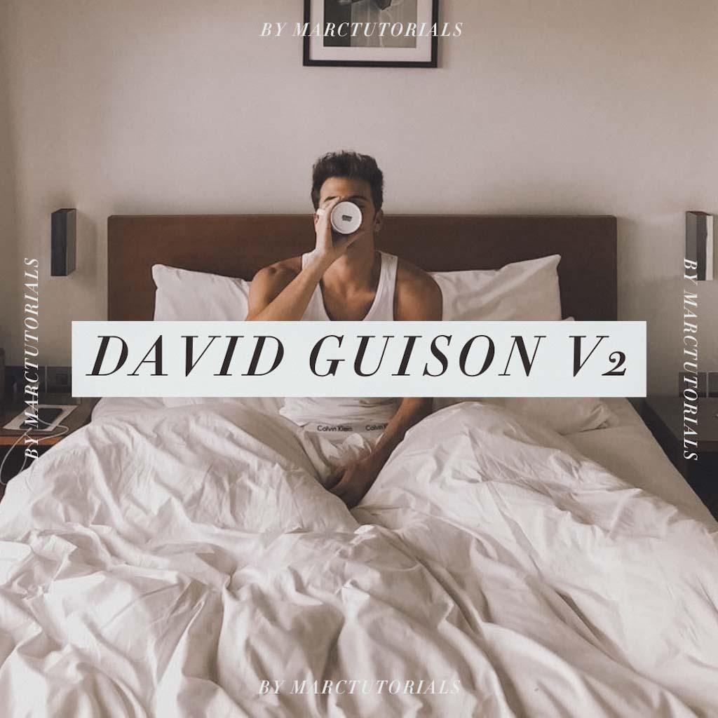 david guison v2- Lightroom Preset