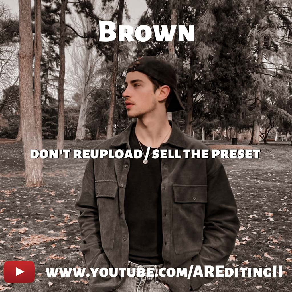 Brown Preset- Lightroom Preset