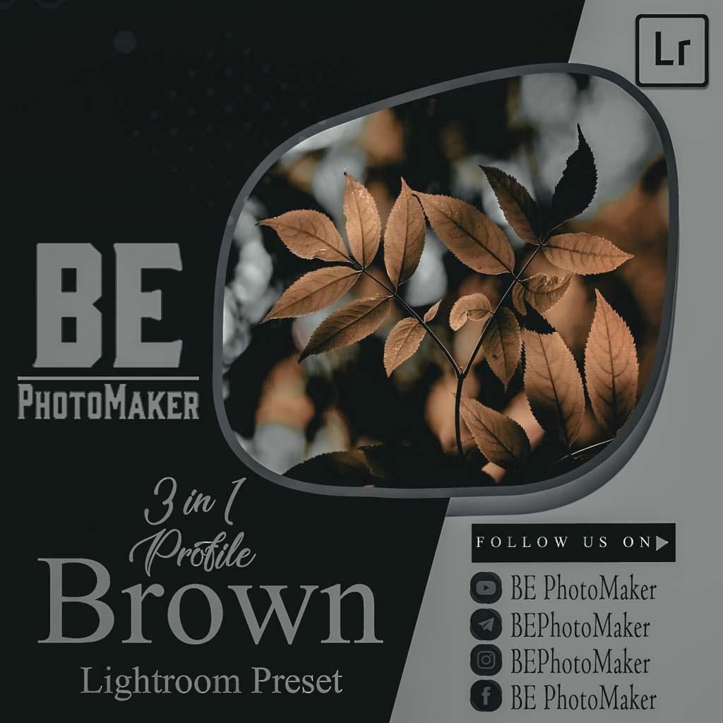 3 in 1 Profile Brown Preset by BE PhotoMaker Lightroom Preset