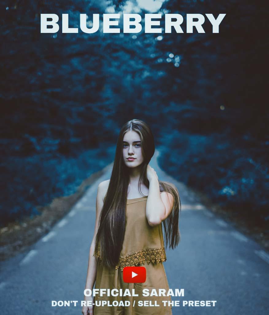BLUEBERRY PRESET Lightroom Preset